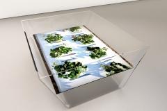 Tischlein-Deck-Dich | © Eva Maria Koch